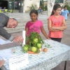 Ден на здравословното хранене и спорта, Габрово 7 октомври 2015 г. 21