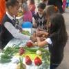 Ден на здравословното хранене и спорта, Габрово 7 октомври 2015 г. 11