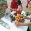 Ден на здравословното хранене и спорта, Габрово 7 октомври 2015 г. 14