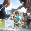 Ден на здравословното хранене и спорта, Габрово 7 октомври 2015 г. 20