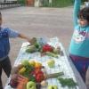 Ден на здравословното хранене и спорта, Габрово 7 октомври 2015 г. 28